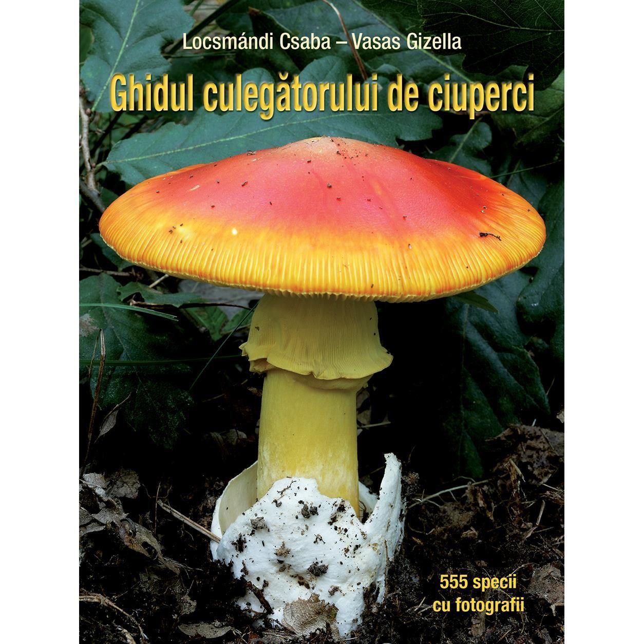 Ciuperci otrăvitoare - Wikipedia