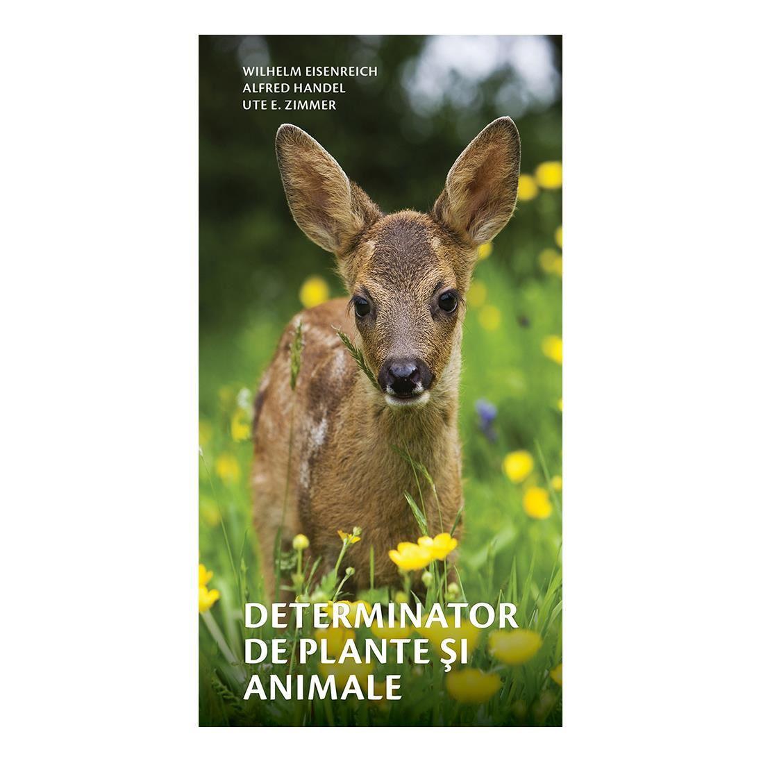 Determinator de plante și animale imagine edituracasa.ro