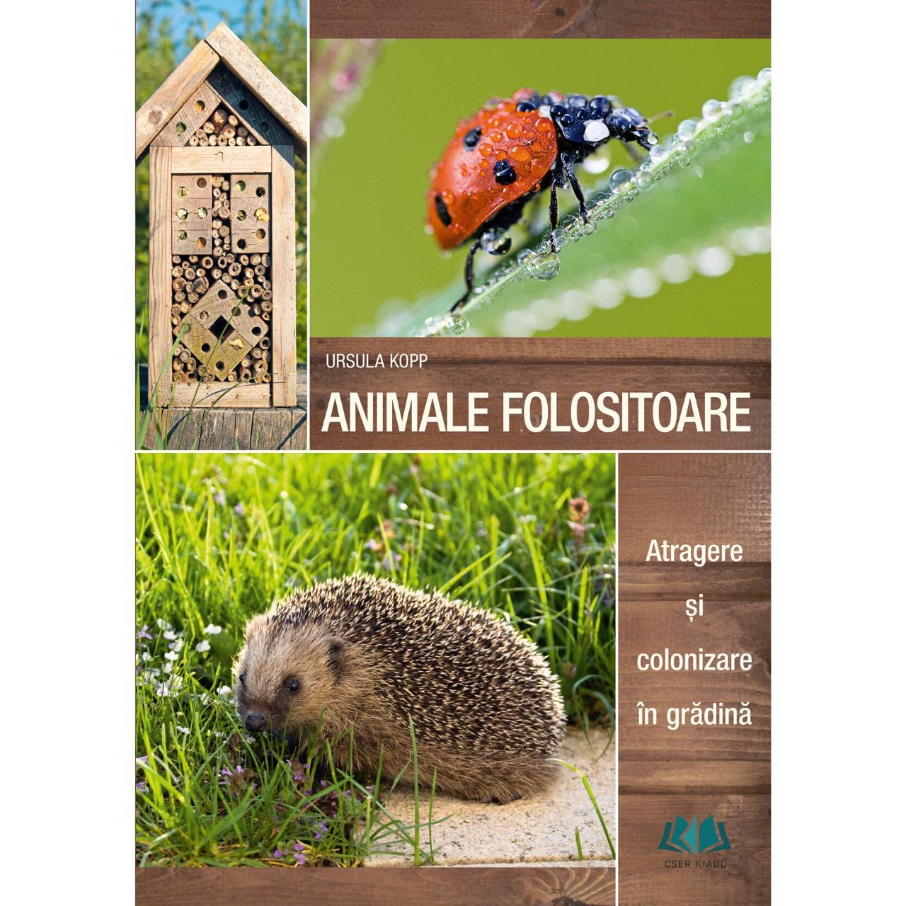 Animale folositoare - Atragere și colonizare în grădină imagine edituracasa.ro