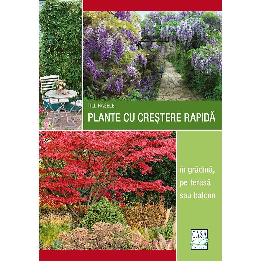 Plante cu creștere rapidă - în grădină, pe terasă sau balcon imagine edituracasa.ro